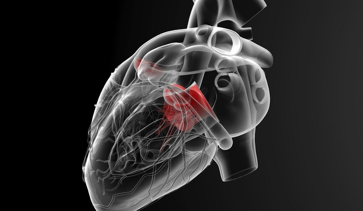 santa-giustina-castello-di-godego-cardiologia